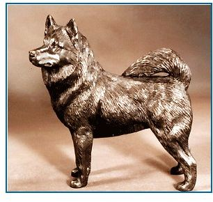 Alaskan Malamute - Large Standing Dog