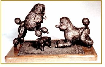 Poodle Standard - Lets Play