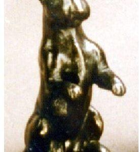 Bull Terrier- Begging