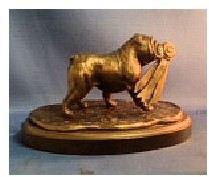 Bulldog The Winner