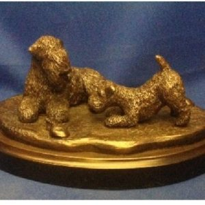 Soft Coated Wheaten Terrier - Adult and Pup