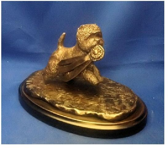 West Highland White Terrier - The Winner