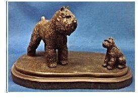 Bouvier - Adult & Pup