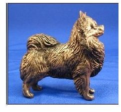 Chihuahua Long Coated -Small Standing Dog