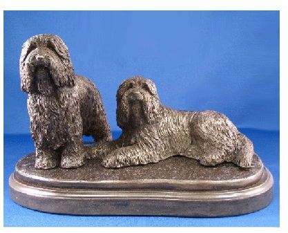 Bearded Collie- Med. Pair On Grass