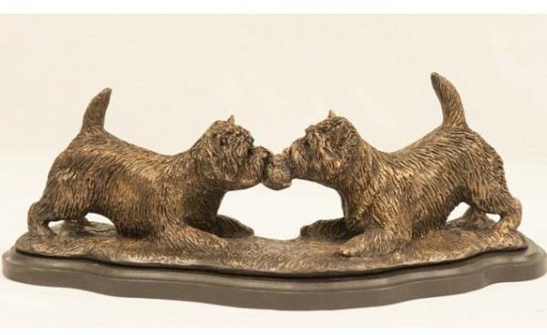 Cairn Terrier -Tug O'War