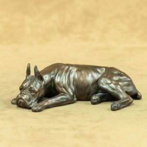 Boxer - Small Sleeping Dog