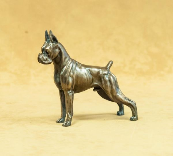 Boxer - Small Standing dog