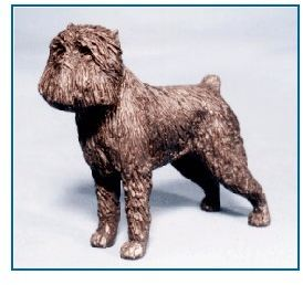 Affenpinscher - Small Standing Dog