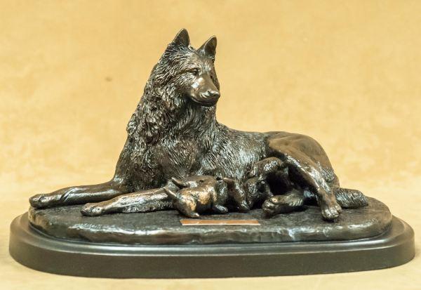 Belgian Sheepdog/Tervuren - The Beginning II