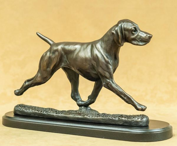 German Shorthair Pointer - Large Moving Dog