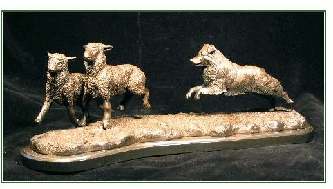 Australian Shepherd - Herding II