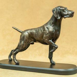 Weimaraner - Dog on Point