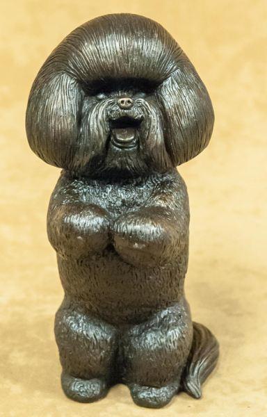 Bichon - Large Begging Dog