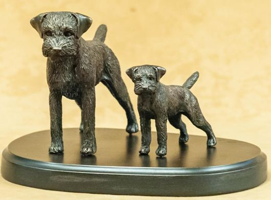 Border Terrier - Adult and Pup