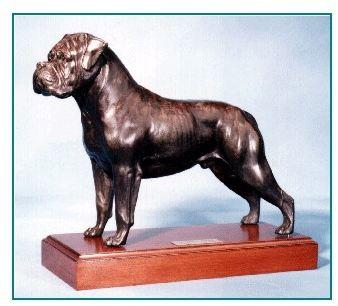 Bullmastiff - X-large Standing