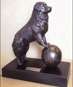 Bernese Mtn. Dog- Berner Rule