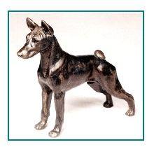 Basenji - Small Standing Dog