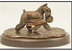 Miniature Schnauzer - The Winner