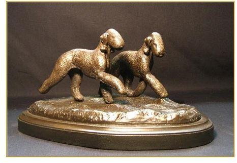 Bedlington Terrier - Small Pair Run/Play