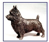 Australian Terrier - Small Standing