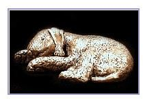 Bedlington Terrier- Small Curled Sleeping Dog