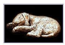 Bedlington Terrier- Small Curled Sleeping Dog