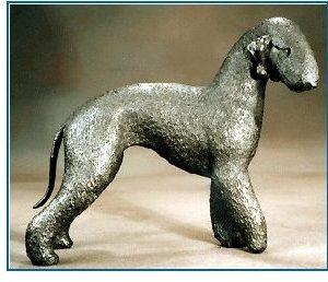 Bedlington Terrier -Large Standing Dog