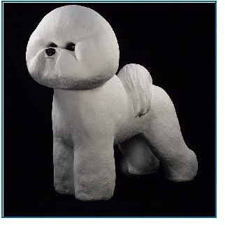 Bichon - Life Size Dog