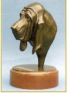 Bloodhound - Headstudy