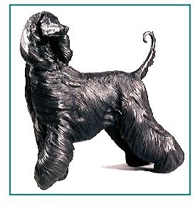 Afghan Hound - Large Standing Dog