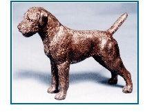 Border Terrier - Small Standing Dog
