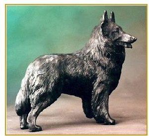 Belgian Sheepdog/Tervuren - Large Standing Dog