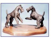 Airedale Terrier- The Alpha Challenge