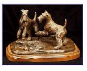 Airedale Terrier - Look A Frog