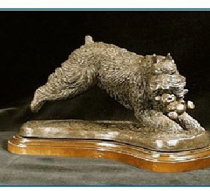 Bouvier Des Flandres - Leaping with Teddy Bear