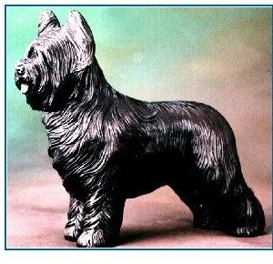 Briard - Large Standing Dog