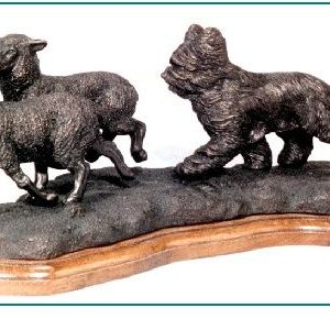 Briard - Herding Sheep