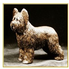 Briard - Small Standing dog