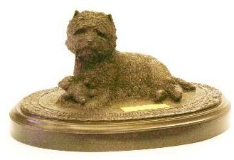 Cairn Terrier - My New Toy