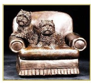 Cairn Terrier - Sitting Pretty