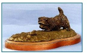 Cairn Terrier - Playing with Ball or Frog