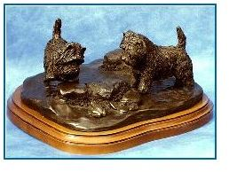 Cairn Terrier - Look A Frog