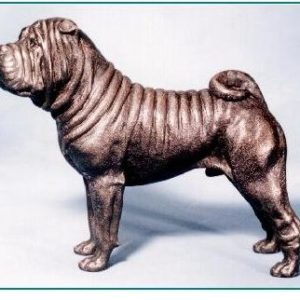 Chinese Shar Pei -Large Standing Male
