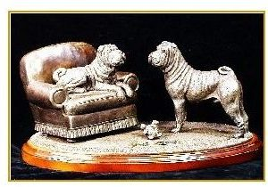 Chinese Shar Pei -The Gift