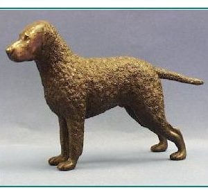 Curly Coated Retriever Dog - Large Standing Dog