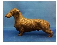 Dachshund Wirehaired - Large Standing Dog