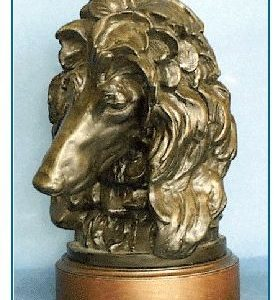 Afghan Hound - Large Bust