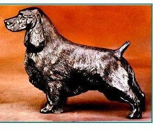English Springer Spaniel - Large Standing Dog