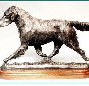 Flat Coated Retriever- Large Moving Dog